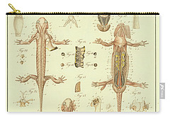 Fire Salamander Anatomy Carry-all Pouch