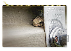 Carry-all Pouch featuring the photograph Garage Door Tree Frog by Lars Lentz