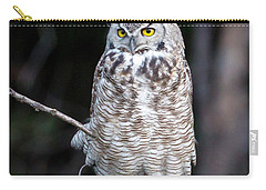 Great Horned Owl  Carry-all Pouch by Jack Bell