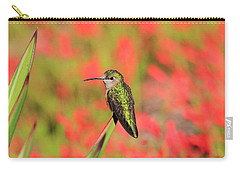 Hummingbird #5 Carry-all Pouch