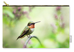 Carry-all Pouch featuring the photograph Hummingbird II by Christina Rollo