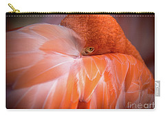 Carry-all Pouch featuring the photograph I See You by Lisa L Silva