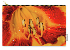 Inside The Lily Carry-all Pouch