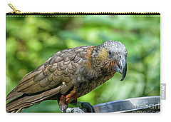 Kaka Carry-all Pouch by Patricia Hofmeester