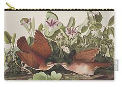 Key West Dove Carry-all Pouch by John James Audubon