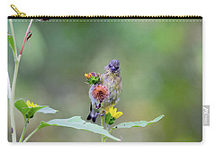 Lesser Goldfinch 4036 Carry-all Pouch