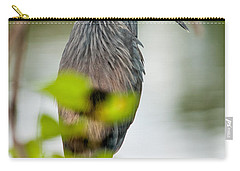 Carry-all Pouch featuring the photograph Little Blue Heron by Christopher Holmes