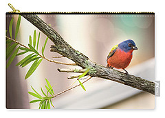 Male Painted Bunting Carry-all Pouch