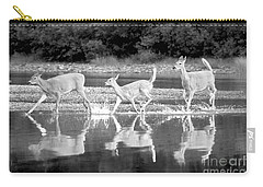 Carry-all Pouch featuring the photograph Many Glacier Deer 1 by Adam Jewell