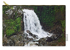 Mini Waterfall Carry-all Pouch