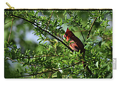 Carry-all Pouch featuring the photograph Mr Red by Skip Willits
