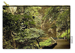 Carry-all Pouch featuring the photograph Natural Bridge  by Raymond Earley