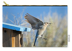 Nest Builder Carry-all Pouch by Mike Dawson
