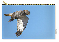 Carry-all Pouch featuring the photograph Northern Harrier by Tam Ryan