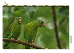 Orange -chinned Parakeets  Carry-all Pouch