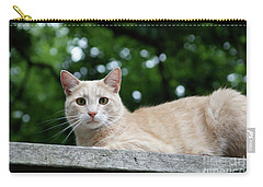 Orange Tabby Carry-all Pouch