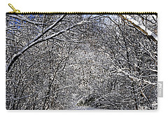Path In Winter Forest Carry-all Pouch