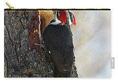Pileated Whos There Carry-all Pouch