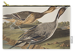 Pin-tailed Duck Carry-all Pouch by John James Audubon