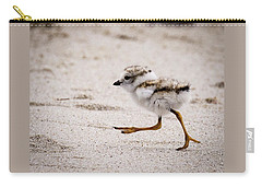 Piping Plover Chick Carry-all Pouch