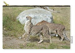 Carry-all Pouch featuring the photograph Poise by Fraida Gutovich