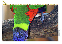 Rainbow Lorikeet Carry-all Pouch by Inspirational Photo Creations Audrey Woods