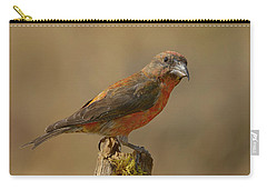 Red Crossbill Carry-all Pouch by Doug Herr