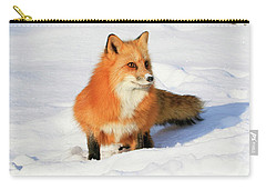 Red Fox Carry-all Pouch by Steve McKinzie