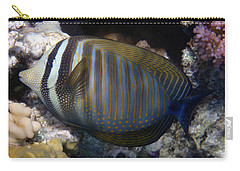 Red Sea Sailfin Tang  Carry-all Pouch