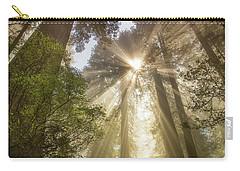 Redwoods Sunburst Carry-all Pouch