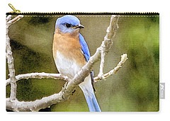 Carry-all Pouch featuring the photograph Rhapsody In Blue by Betty LaRue