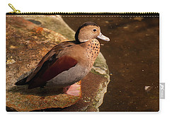 Carry-all Pouch featuring the photograph Ringed Teal On A Rock by Chris Flees