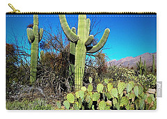 Sabino Canyon Carry-all Pouch