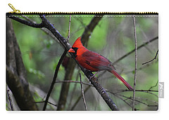 Carry-all Pouch featuring the photograph Saint Louis by Skip Willits