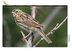 Savannah Sparrow Carry-all Pouch