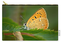 Carry-all Pouch featuring the photograph Scarce Copper by Jouko Lehto