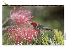 Scarlet Honeyeater Carry-all Pouch