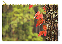 Scenic Elder Lake Carry-all Pouch