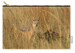 Silver Backed Jackal Carry-all Pouch