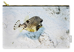 Carry-all Pouch featuring the photograph Smooth Trunkfish by Perla Copernik