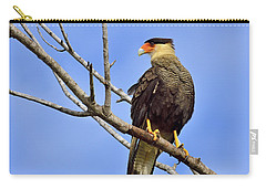 Carry-all Pouch featuring the photograph Southern Comfort by Tony Beck