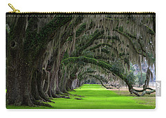 Southern Oaks Carry-all Pouch by Serge Skiba