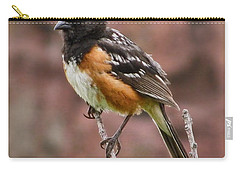 Spotted Towhee Carry-all Pouch by Steven Parker