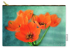 Carry-all Pouch featuring the photograph Star Of Bethlehem by Jutta Maria Pusl