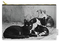 Carry-all Pouch featuring the photograph Street Cats - Portugal by Barry O Carroll