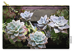 Succulents Carry-all Pouch by Catherine Lau
