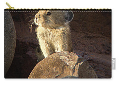 The Coast Is Clear Wildlife Photography By Kaylyn Franks Carry-all Pouch