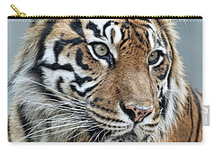 The Gaze Of A Tiger Carry-all Pouch