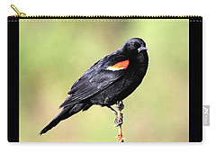 Carry-all Pouch featuring the photograph The Look by Shane Bechler