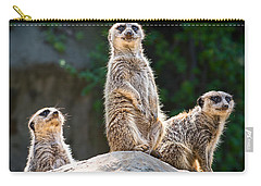 Three's Company Carry-all Pouch by Jamie Pham